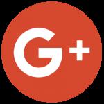 logo Google Plus et lien vers les articles de Clean Vermine Désinfection sprl