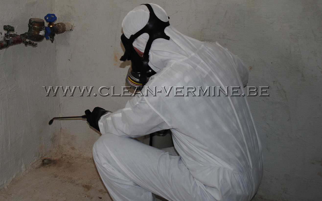 se débarrasser des mites alimentaires et lutter contre les mites des vêtements, pièges anti mites, produits insecticides, traitement contre les mites