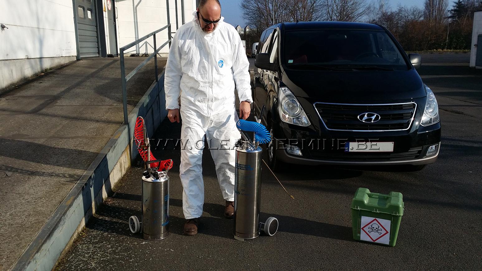 éliminer les puces par un traitement anti puces, lutte préventive contre puces du chien et du chat avec Clean Vermine Désinfection à Bruxelles