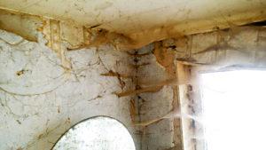Extermination d'araignée dans une chambre d'une personne Diogène remplie de toiles d'araignées à Bruxelles