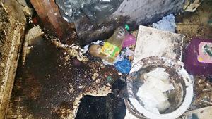 Nettoyage et désinfection Diogène de toilette insalubre dans une maison insalubre à Bruxelles