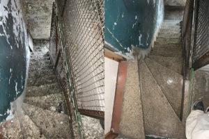 Nettoyage de fientes de pigeons, caca, crottes, excréments de pigeons dans l'escalier d'un bâtiment